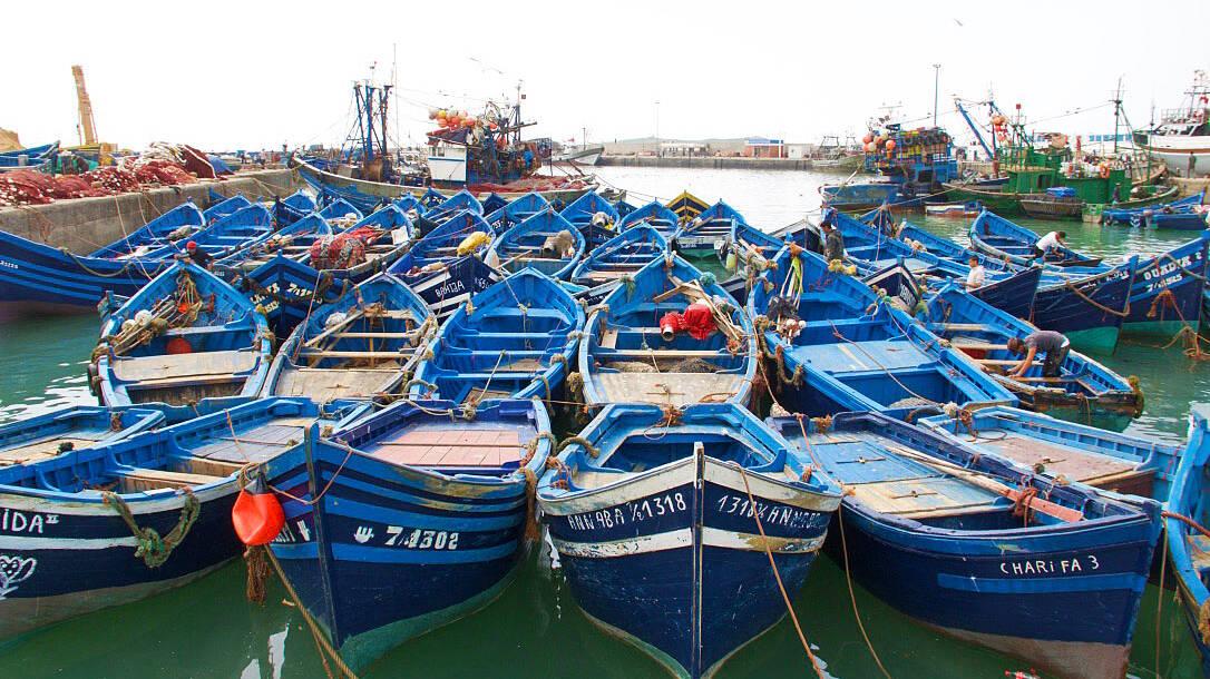 fishing boat essaouira karma surf retreat