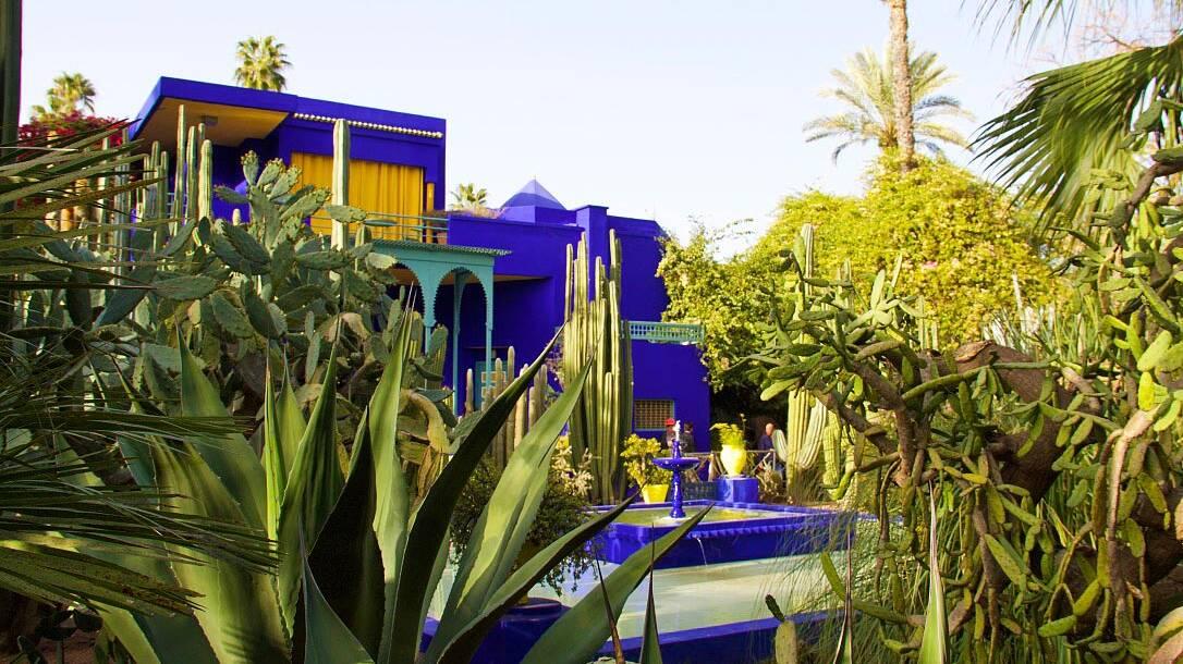 garden jardin majorelle marrakech morocco