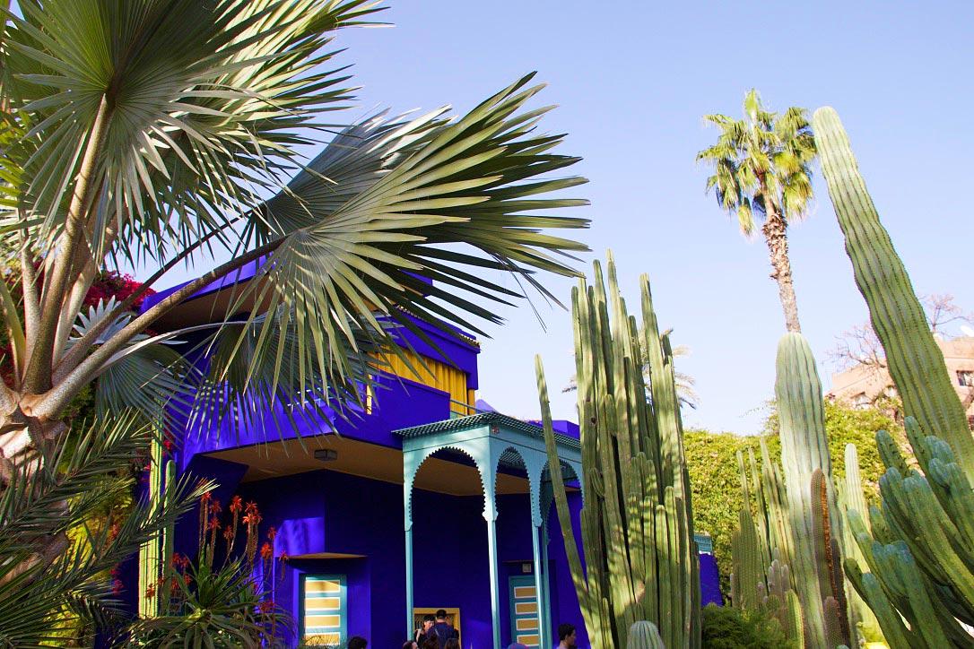 jardin majorelle colors house marrakech morocco
