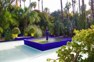 jardin majorelle garden cactus palmtrees marrakech morocco