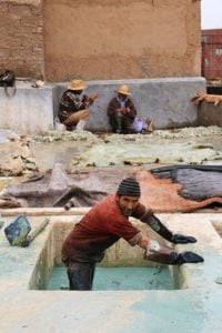 tanneries marrakech leather morocco