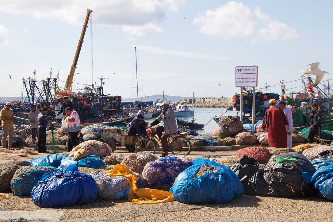 essaouira fish market morroco