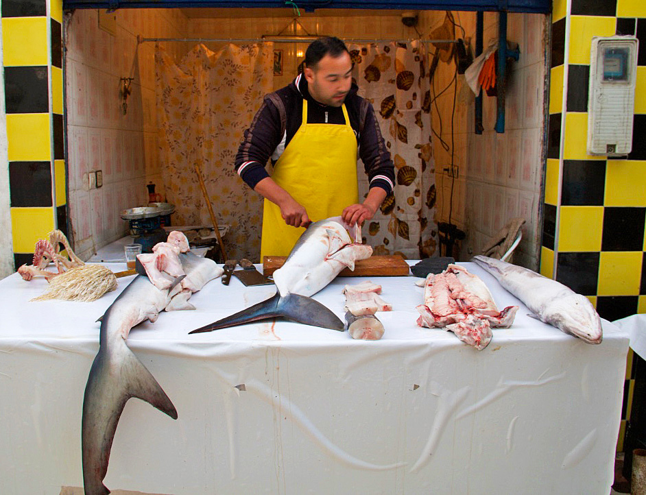 food market fish shark essaouira morocco