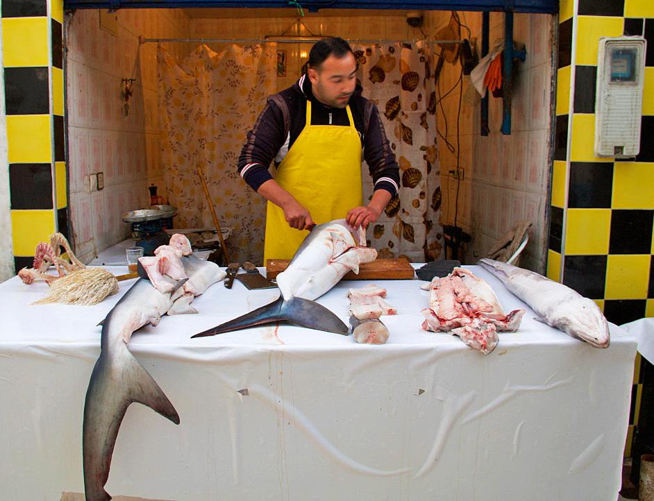 food market fish shark essaouira morocco