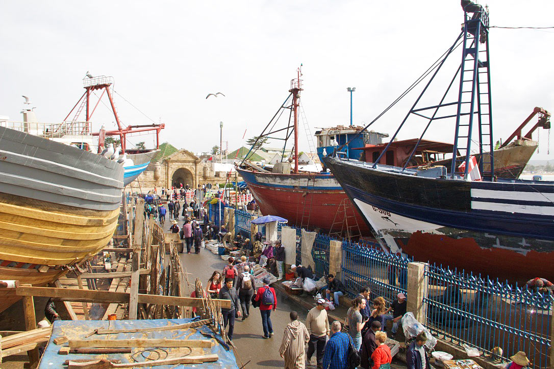 harbor fish market essaouira morocco