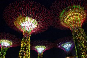 gardens by the bay marina sands singapore