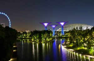 gardens by the bay marina singapore