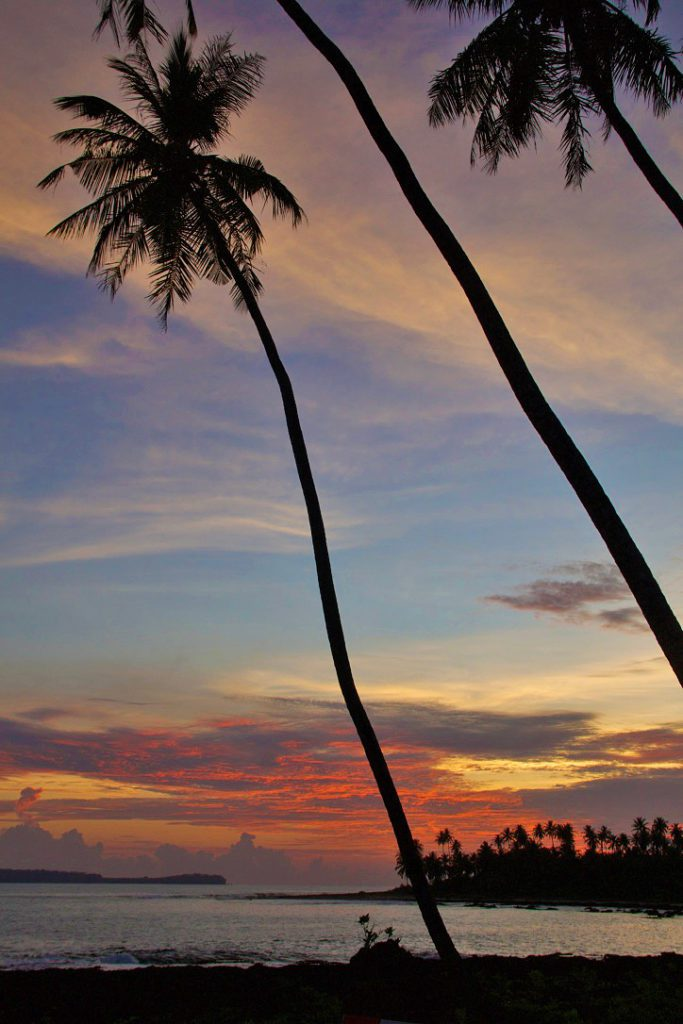 palmtrees sunset view simeulue surf lodges sumatra