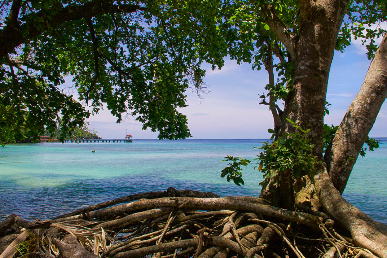 beach paradise pulau weh sumatra