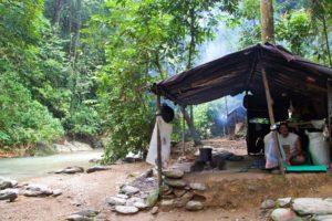 camp jungle trekking bukit lawang sumatra