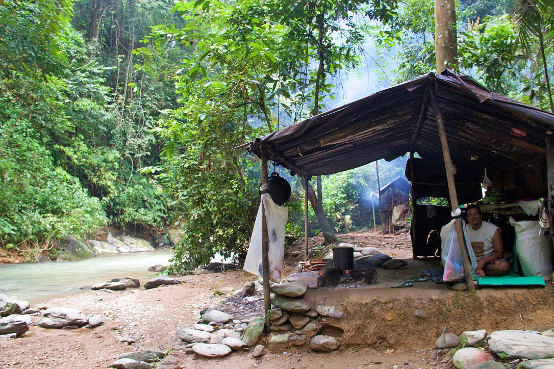 camp jungle trekking bukit lawang sumatra