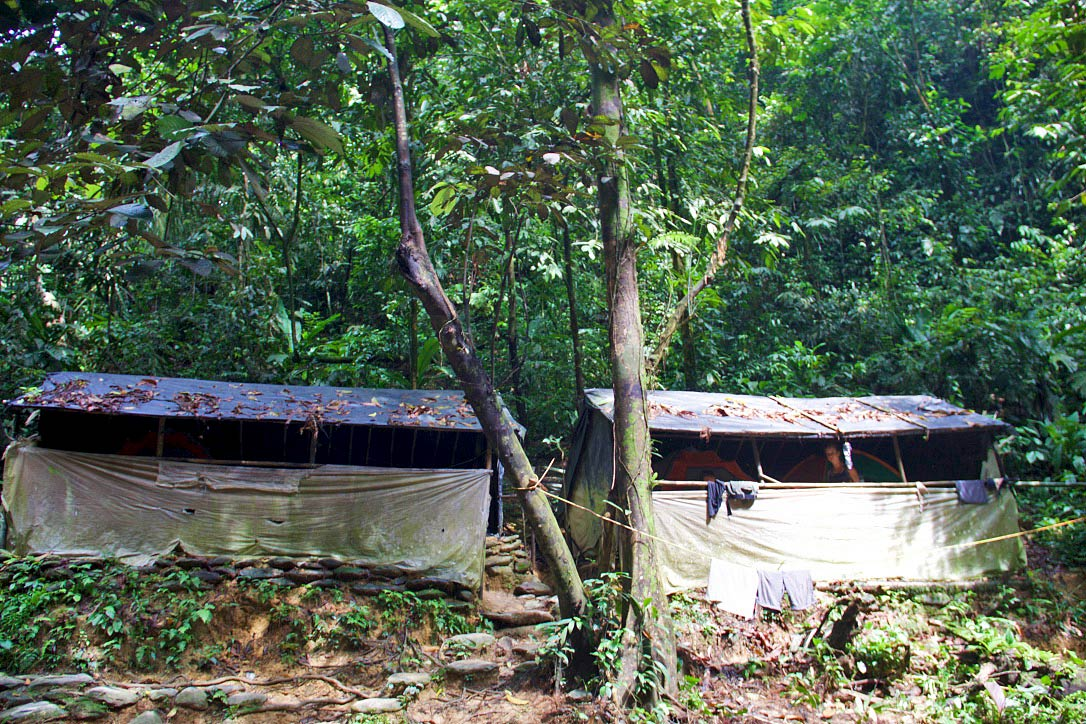 jungle camp trekking bukit lawang sumatra
