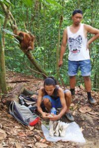 lunch orangutan jungle trekking bukit lawang sumatra