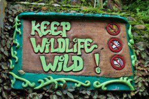 sign wildlife bukit lawang sumatra