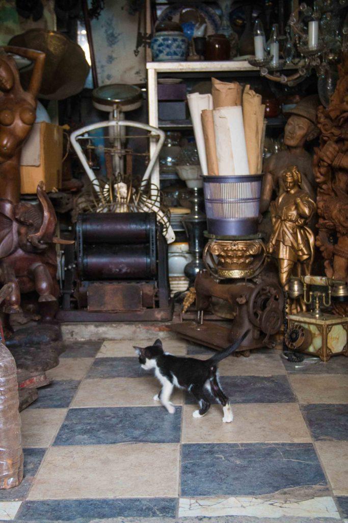 kitten antique shop market jalan surabaya jakarta