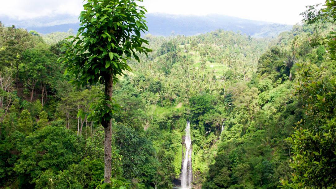 Sekumpul waterfall in North Bali