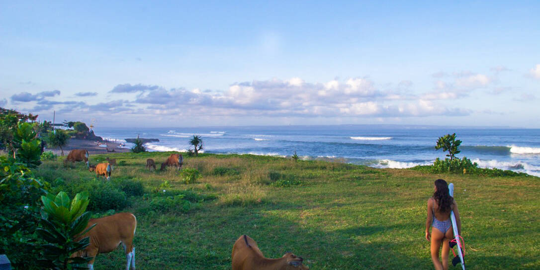 old mans beach surfing canggu bali