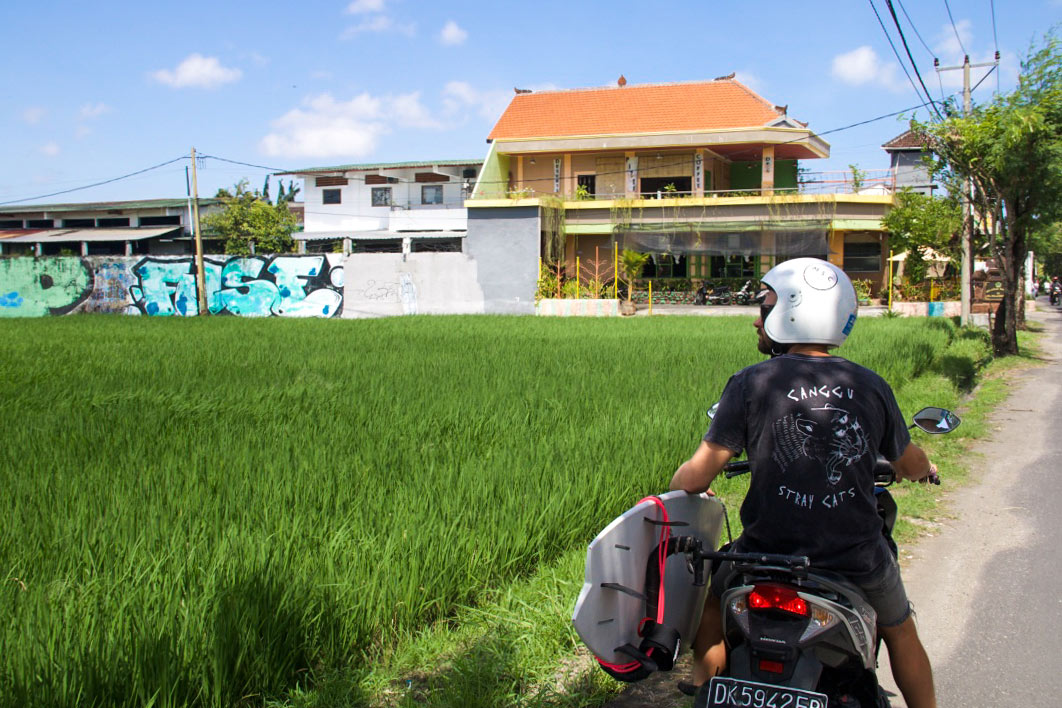 rice fields canggu faith21 tshirts bali bike monkeys