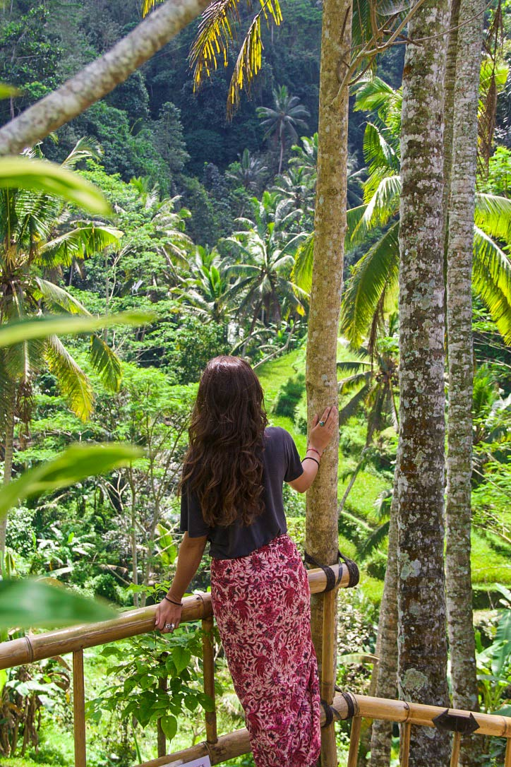 rice fields view gunung kawi bali