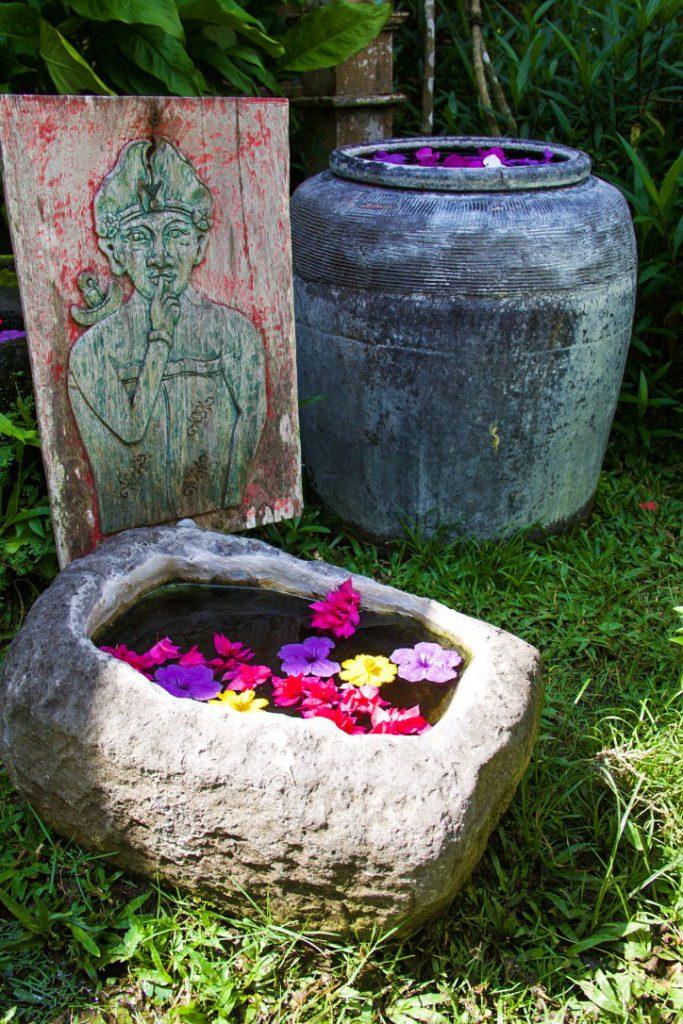garden desa seni flowers canggu bali
