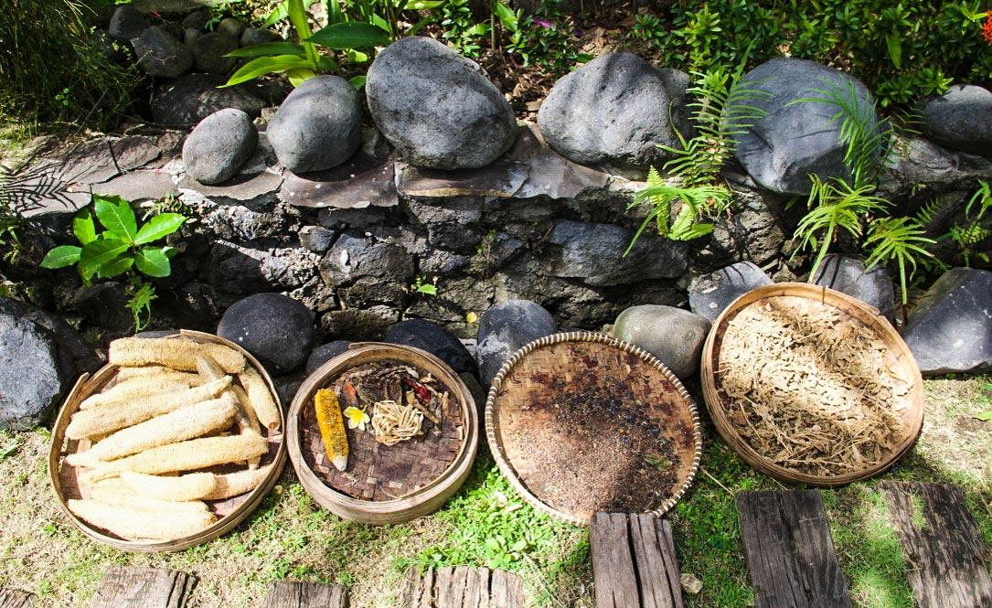 garden desa seni vegetables canggu bali