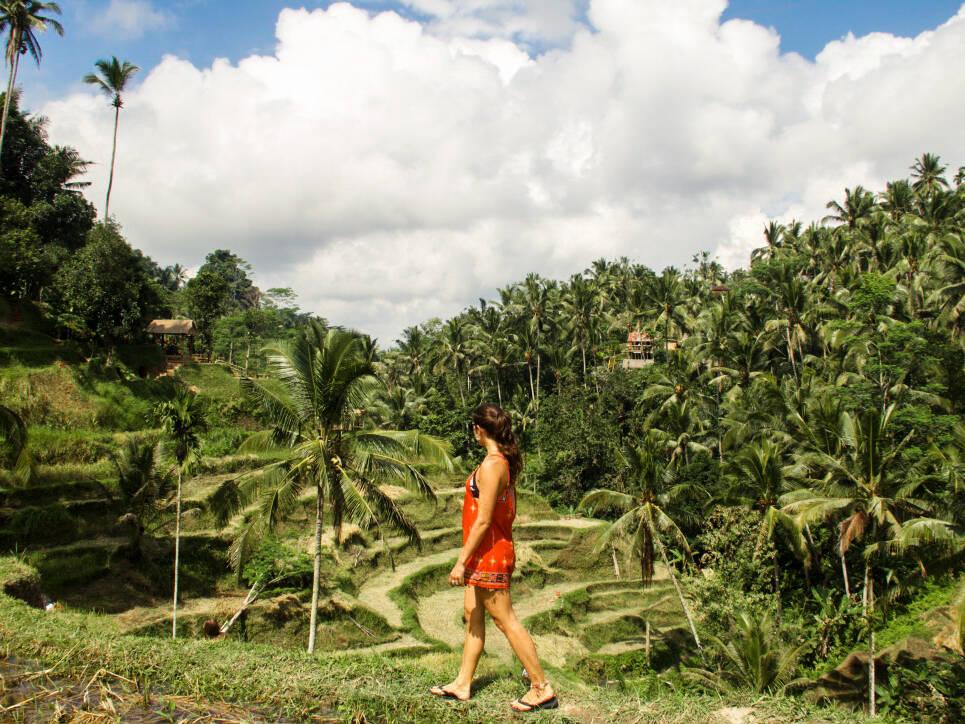 Rice field terraces at Tegallalang in Ubud Bali