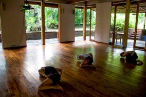white crane martial arts svarga loka wellness resort ubud