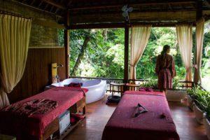 spa wellness retreat svarga loka ubud