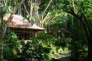 svarga loka jungle resort ubud bali