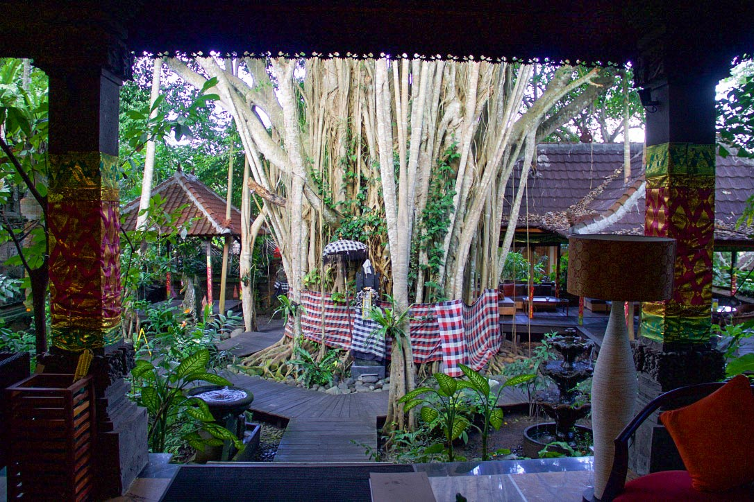 svarga loka wellness resort lobby ubud