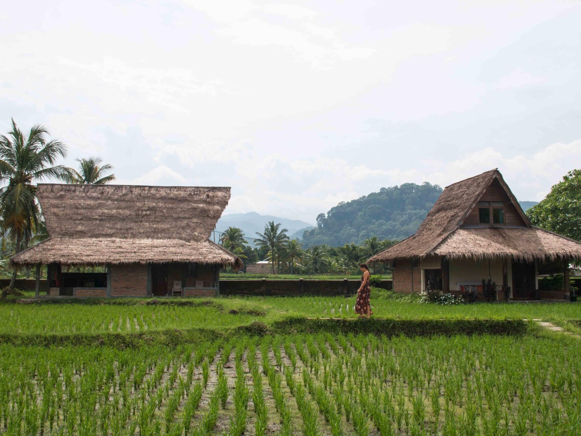 Cimaja Square in Java
