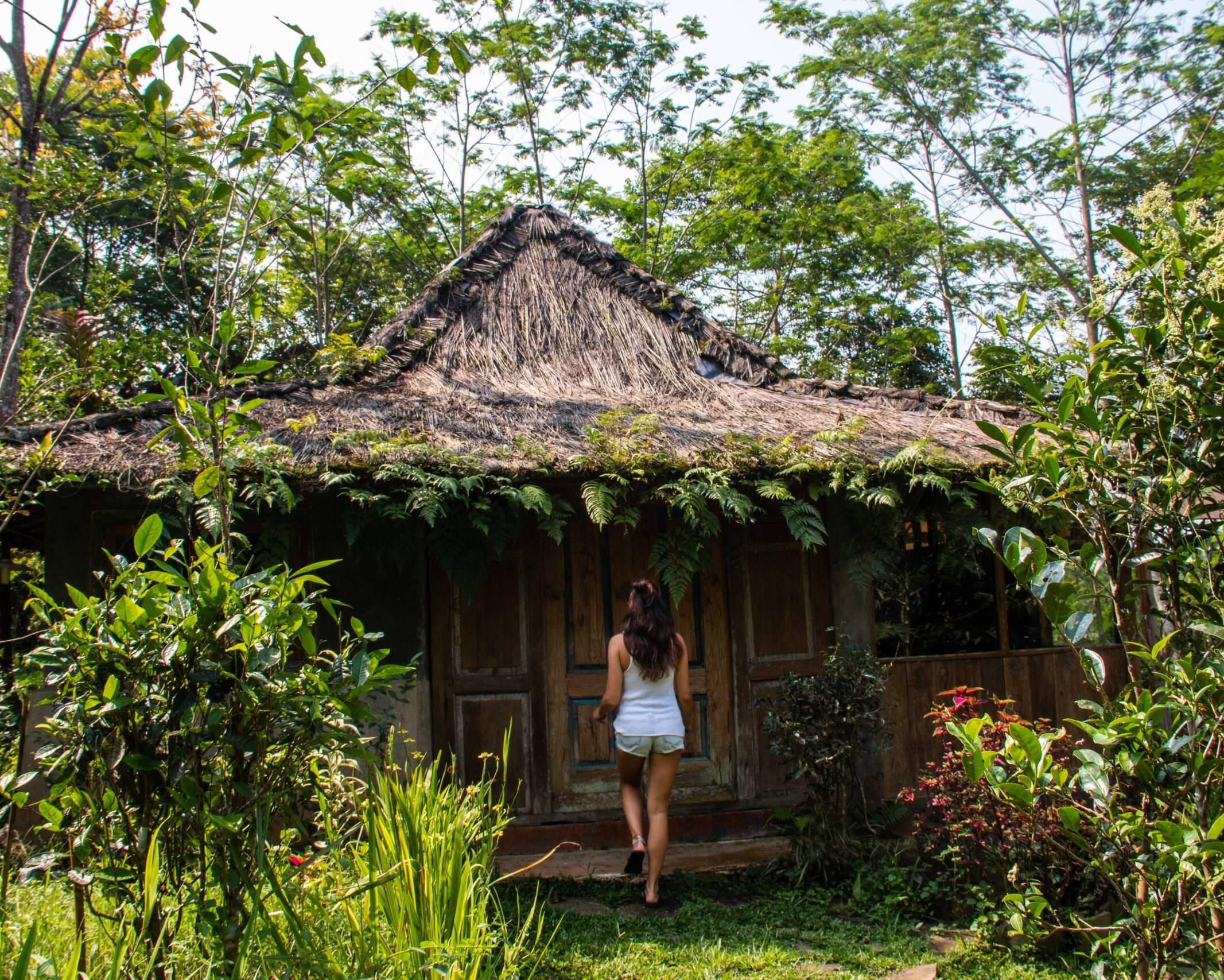 Lodges Ekologica on Portibi Farms Java