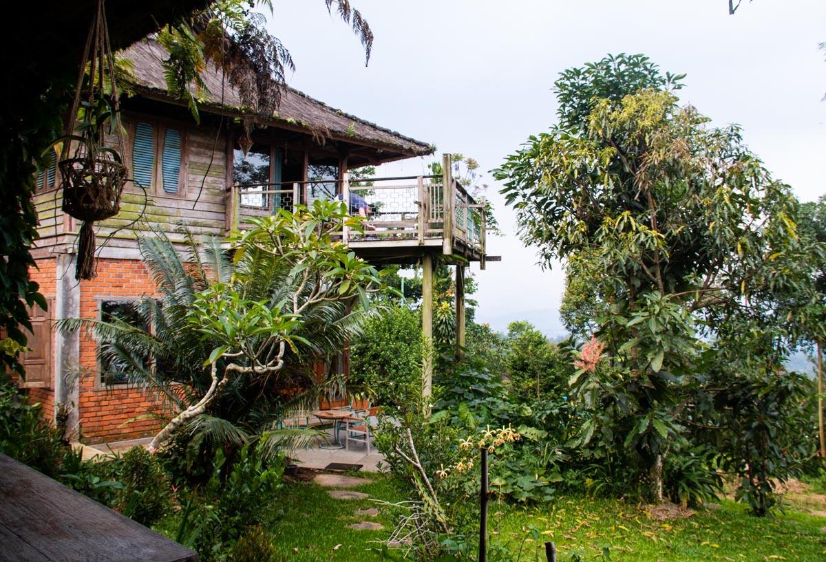 Portibi Farms Lodges Ekologica view