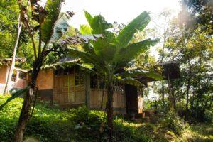 jungle room at Lodges Ekologica Portibi Farms