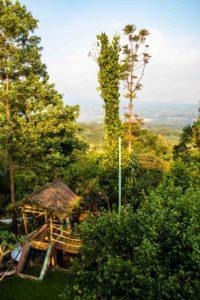 view lodges ekologica at portibi farms java