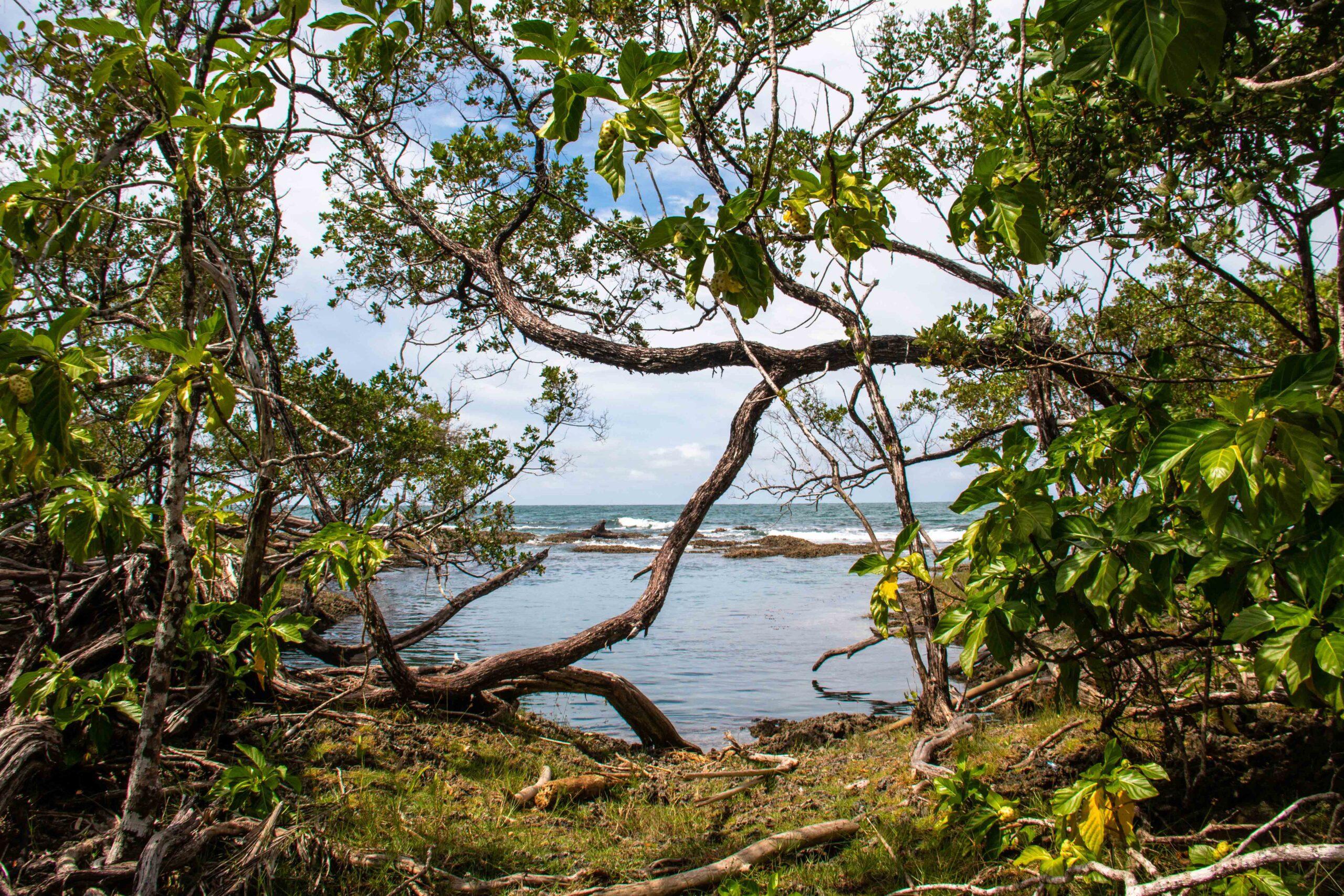 Blue Lagoon at Bocas del Toro