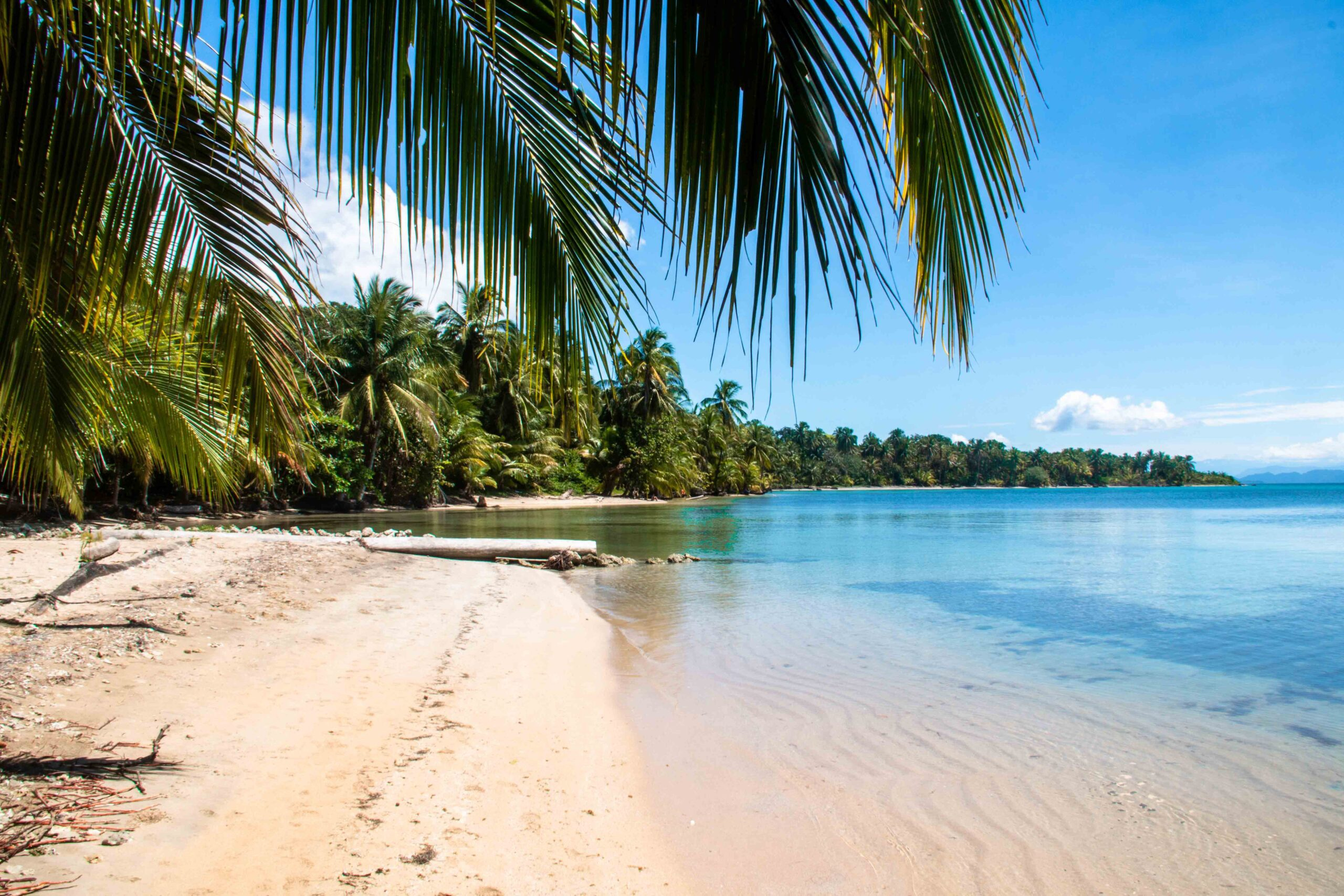 Bocas del Drago Panama