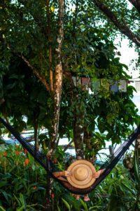 Garden at Casa Comunal Bocas del Toro