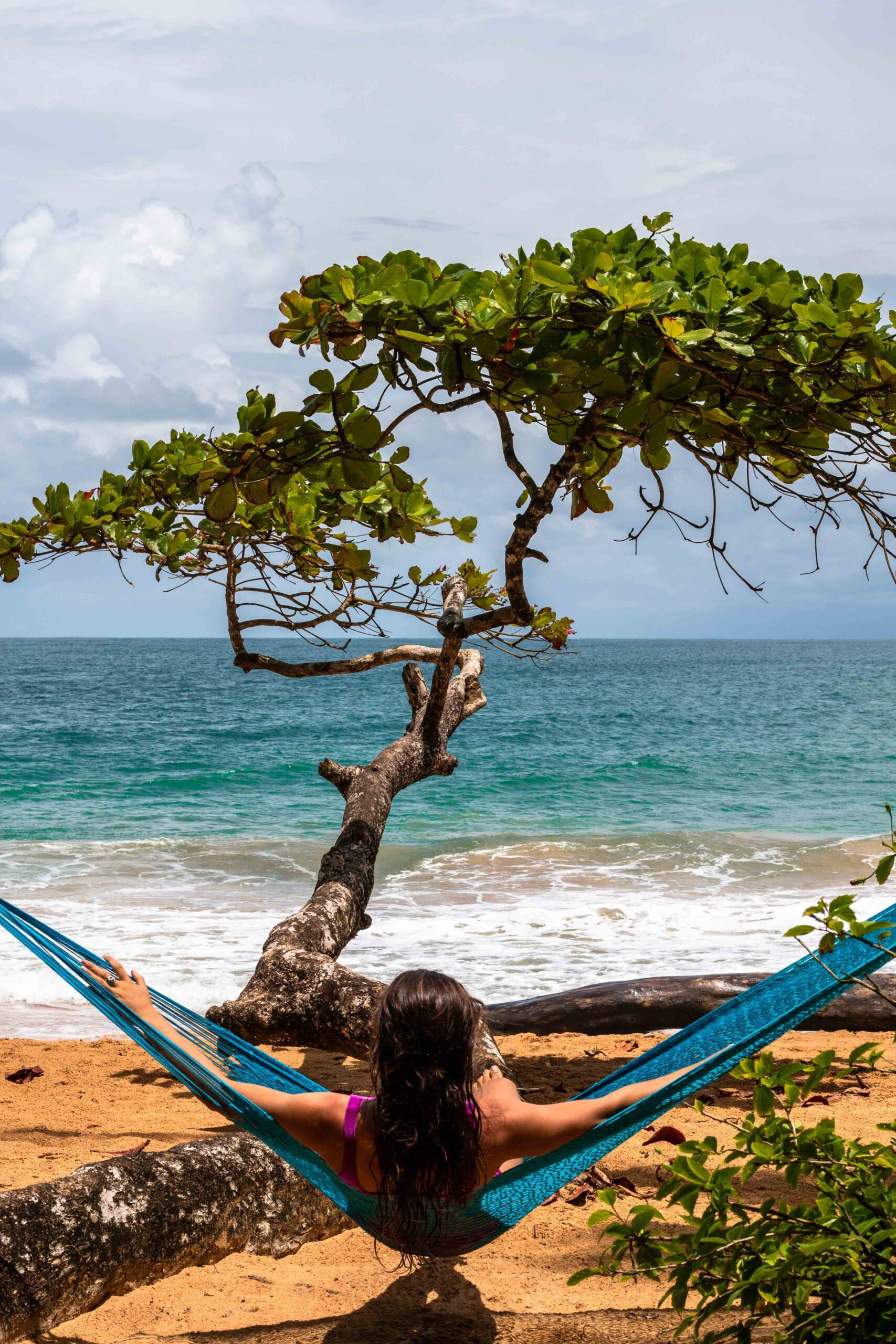 Hammock at beach bar Island Plantation Bocas del Toro