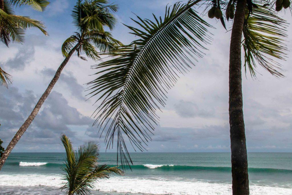 Punta Banco waves