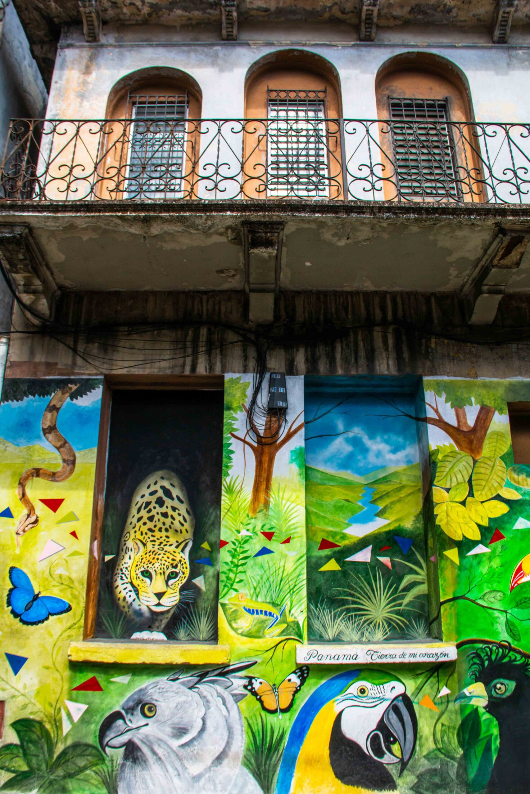Jungle street art Casco Viejo Panama City