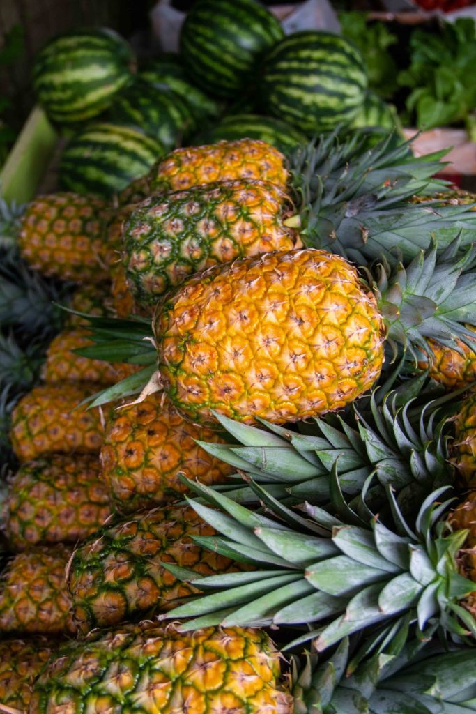 Garden pineapples in Dominical