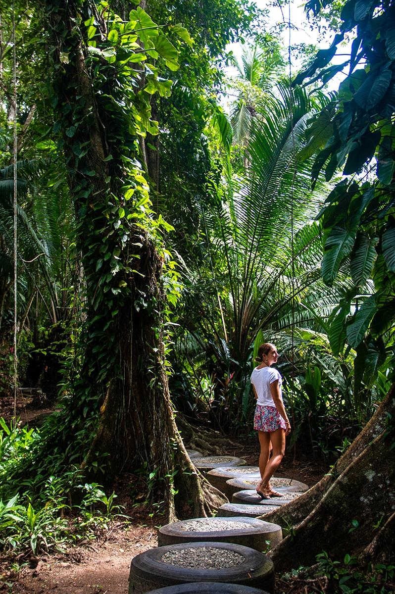 Congo Bongo garden in Manzanillo Costa Rica