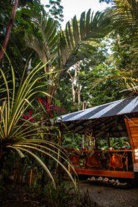 Congo Bongo house in Manzanillo Costa Rica