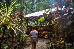 Garden Congo Bongo hotel Costa Rica