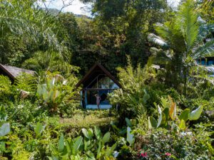 Glass houses at Oxygen Jungle Villas hotel in Costa Rica
