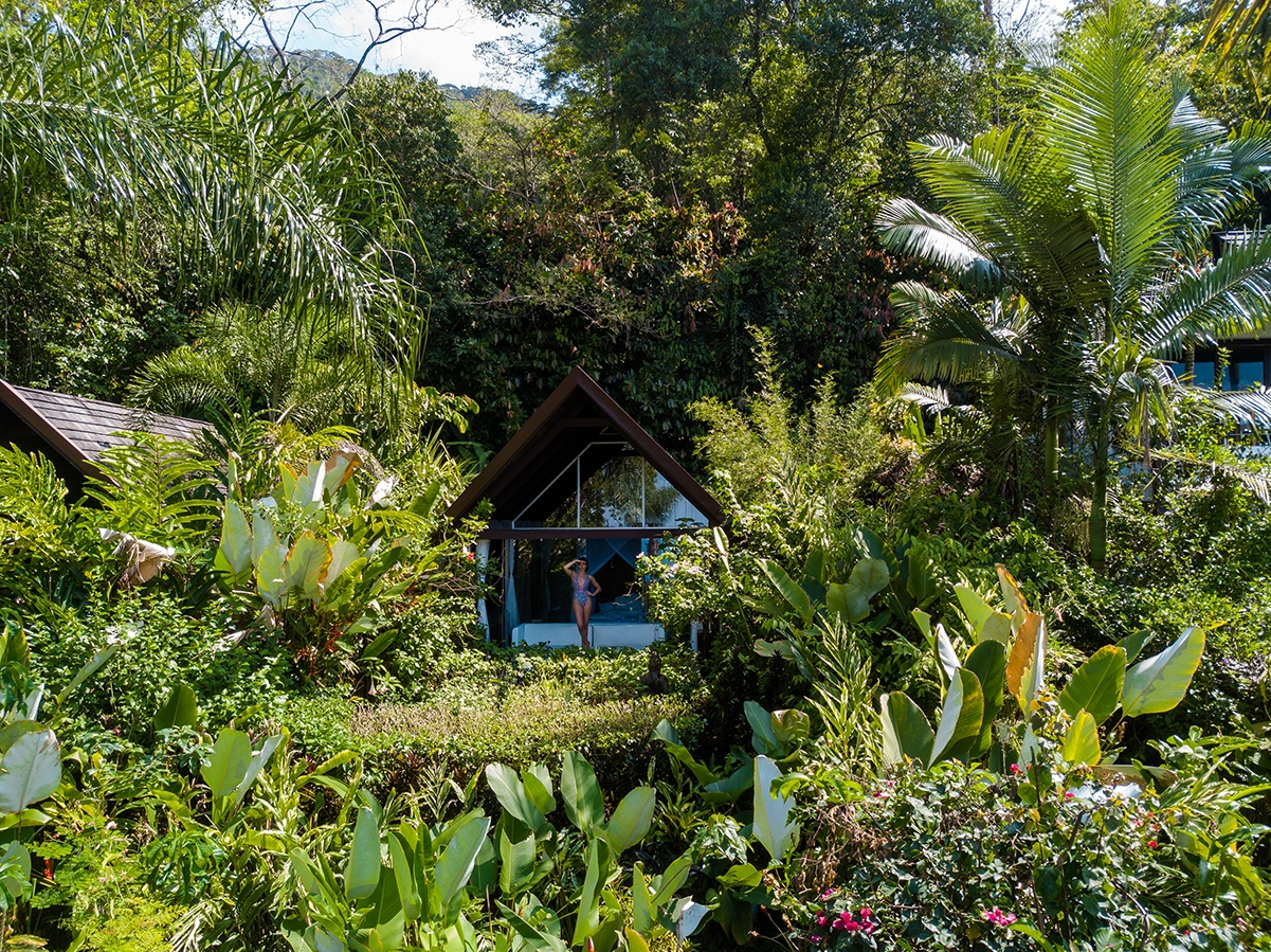 Glass houses at Oxygen Jungle Villas hotel in Costa Rica