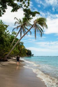Cahuita National Park on the Caribbean of Costa Rica