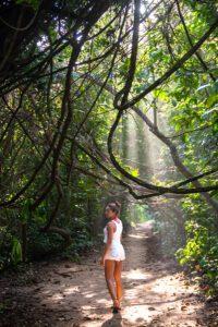 Cahuita National Park Costa Rica