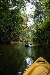 Kayaking in Punta Uva Costa Rica